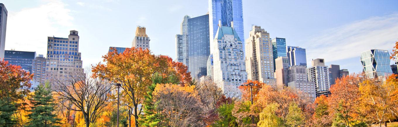 MM News - New York County Medical Society in New York, NY
